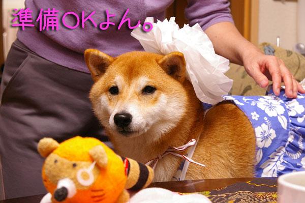 食べたい犬。